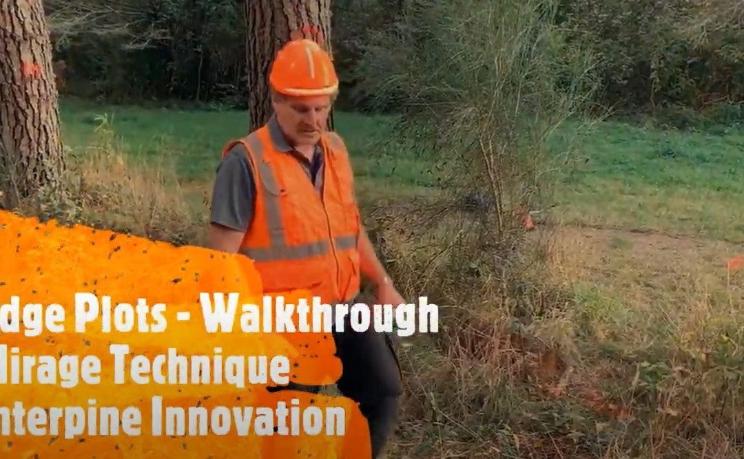 Forest Edge Plots - Installing Walkthrough Mirage Plots in PlotSafe