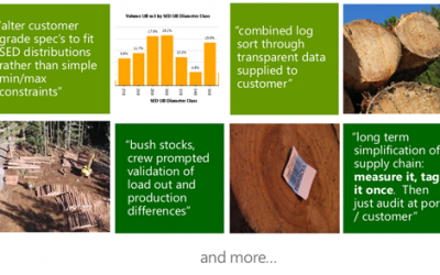Improving Value Recovery & Production Planning using Harvester Data using STICKS
