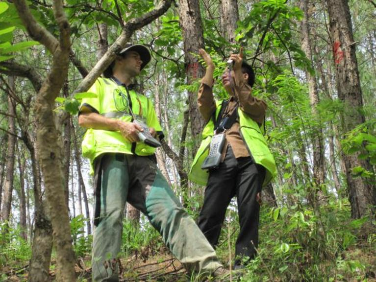 Interpine in China, Review and Training of Forest Inventory Systems and Practices