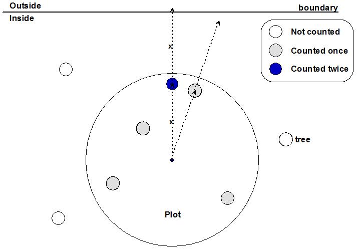 example%202