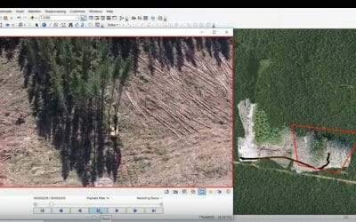 Forestry Felling Breakage Studies with ESRI Full Motion Video Mapping