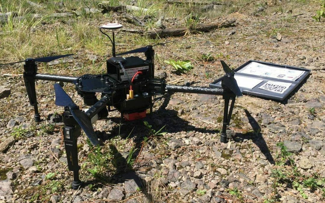 Exploring the Benefits of UAV Multispectral Imagery of the Forest