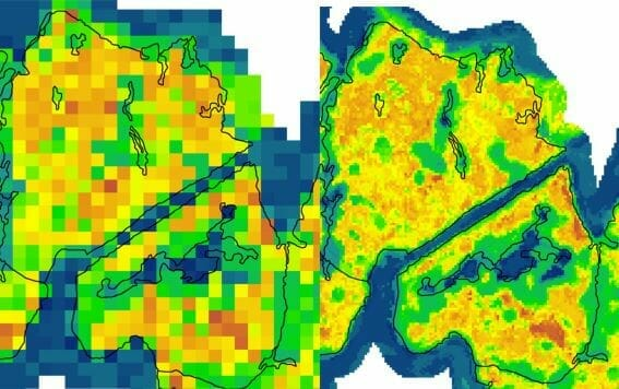 Enhance LiDAR Forest Yield Estimates > Improvements for a clearer view of the forest