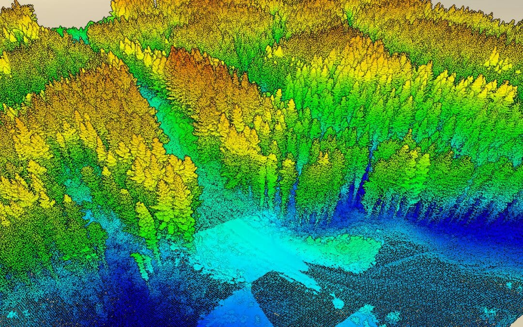 LiDAR – seeing the forest for the trees