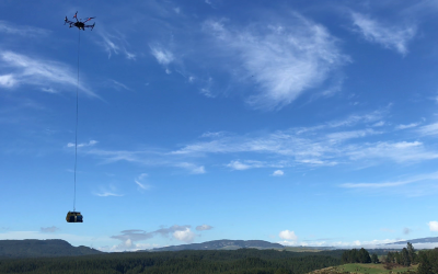 Tree Seedling Delivery using Drones becomes a Reality