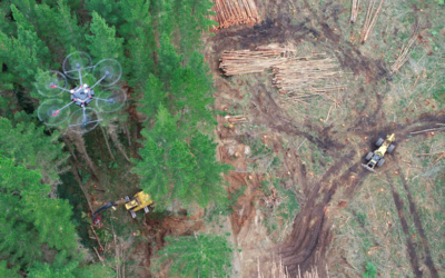 Improving the Modelling of Forest Harvesting through Drones Studies