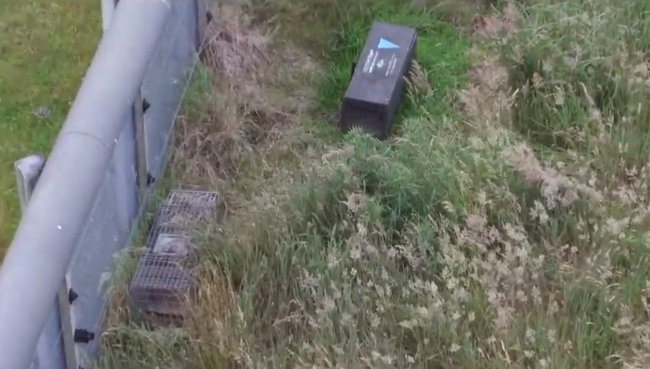 Monitoring Traps Using Drones to Aid Pest Free New Zealand