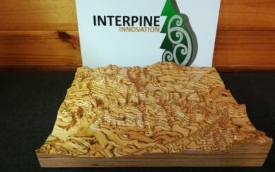 3D LiDAR Terrain Model Carved from Laminated Wood