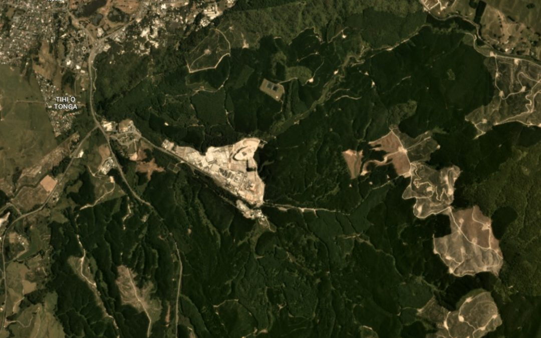 Interpine Partners with Planet to Provide Access to High Frequency Satellite Imagery
