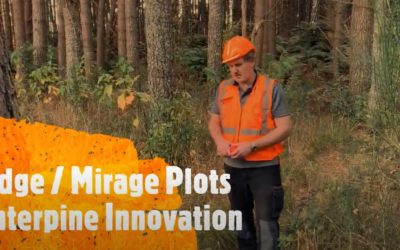 Edge Plots – Forest Inventory Procedures Using PlotSafe