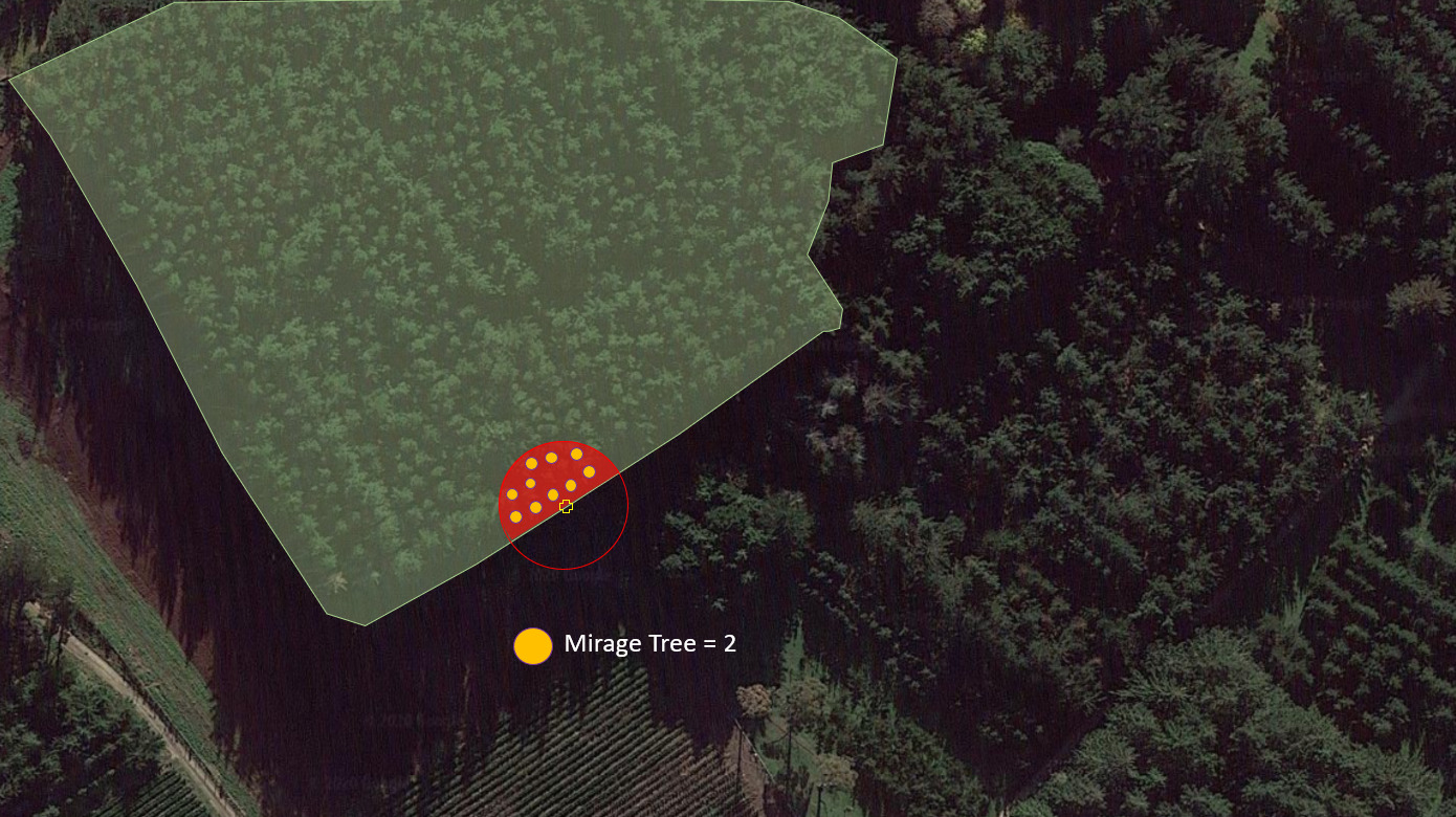Full Edge Mirage Plot for Forest Inventory