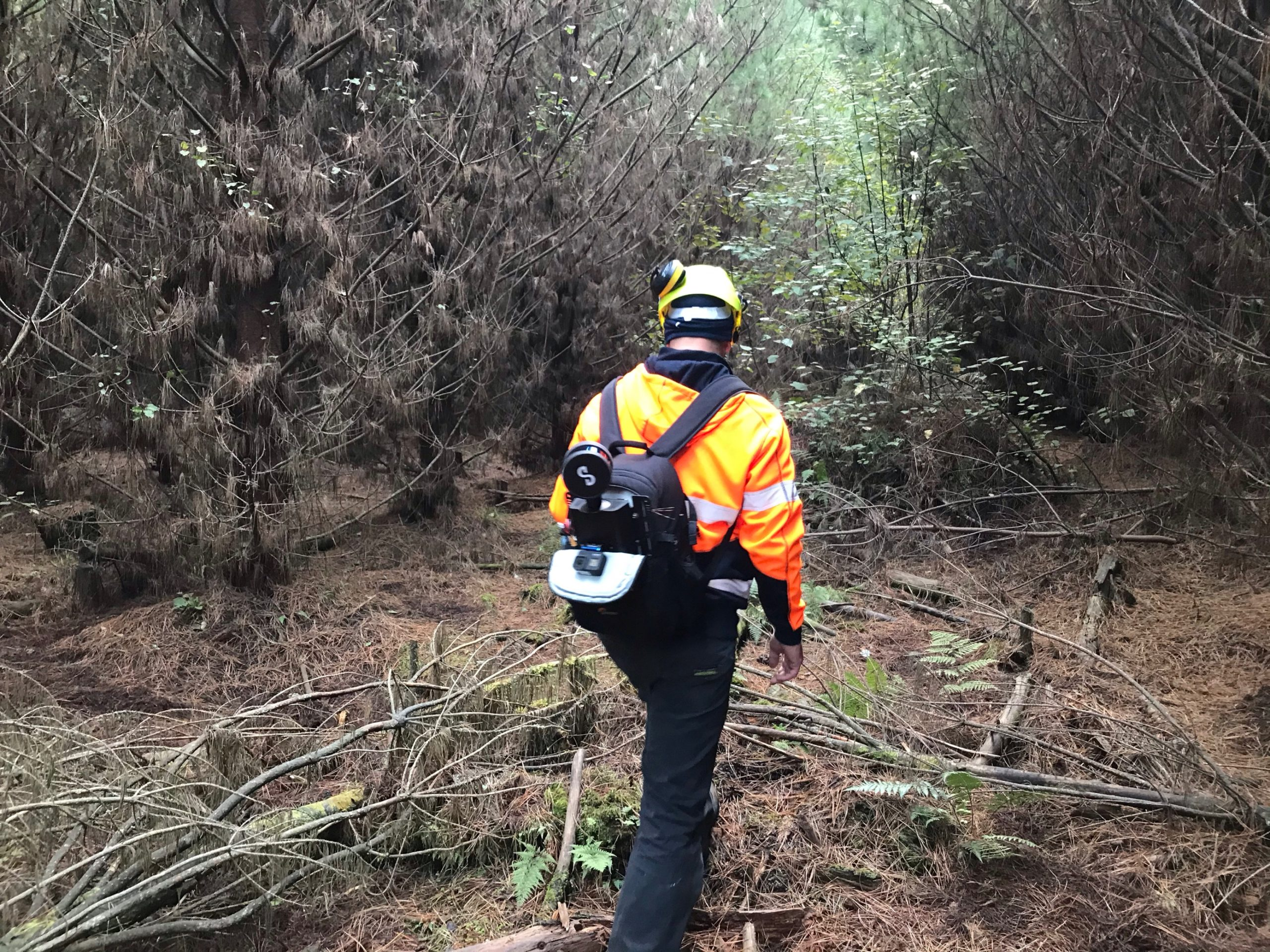 Hovermap Backpack LiDAR Scanner in Use in Forest