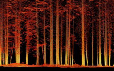 Under Forest Canopy 3D LiDAR Scanning Capabilities of Hovermap Mobile LiDAR Scanner