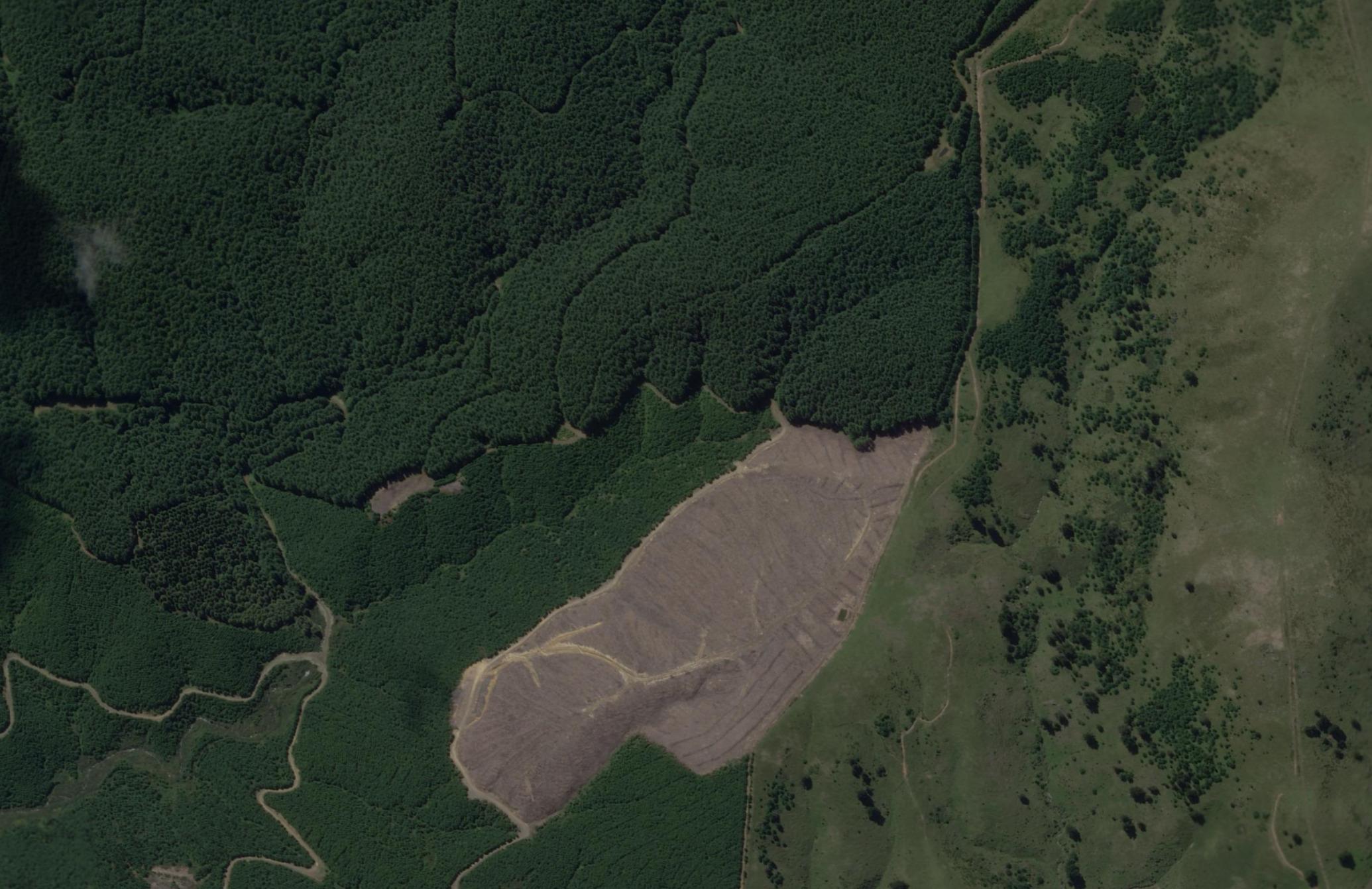 Planet SkySat Wilding Spread Management