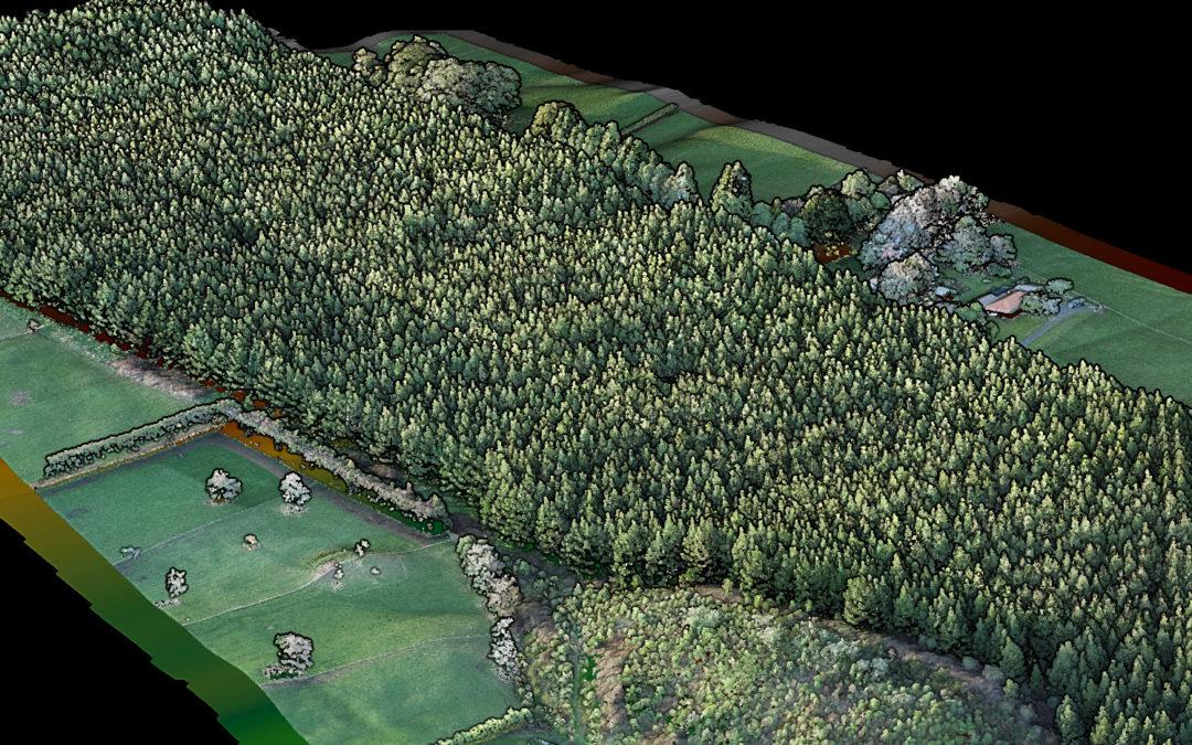 Forest Woodlot LiDAR Drone UAV UAS RPAS